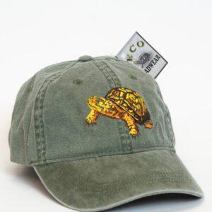 Turtle & Tortoise Caps